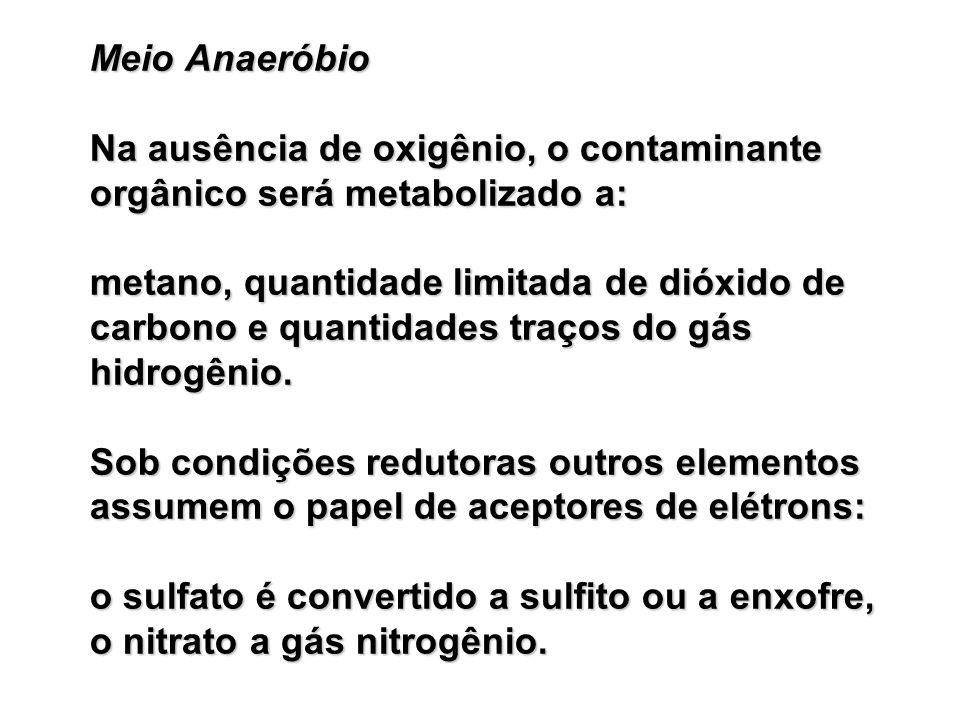 Meio Anaeróbio Na ausência de oxigênio, o contaminante orgânico será metabolizado a: metano, quantidade limitada de dióxido de carbono e quantidades traços do gás hidrogênio.