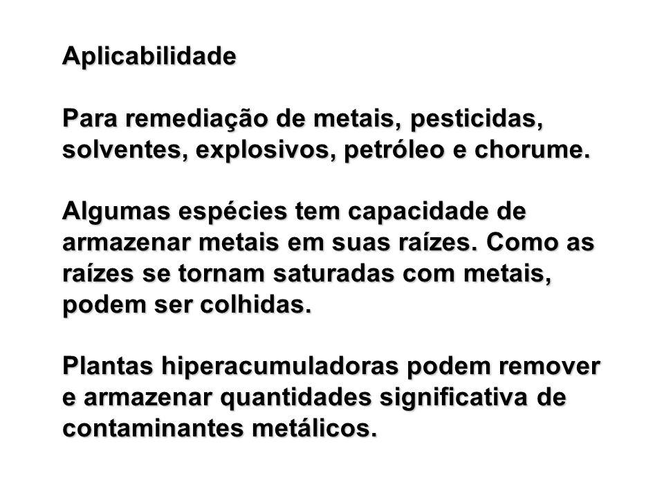 Aplicabilidade Para remediação de metais, pesticidas, solventes, explosivos, petróleo e chorume.