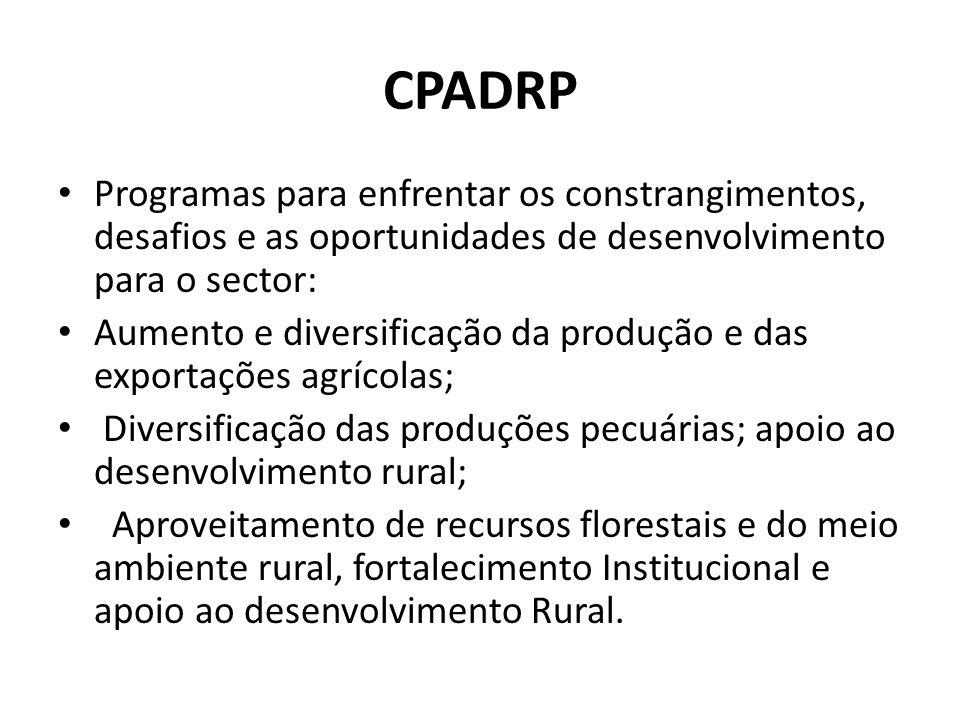 CPADRP Programas para enfrentar os constrangimentos, desafios e as oportunidades de desenvolvimento para o sector: