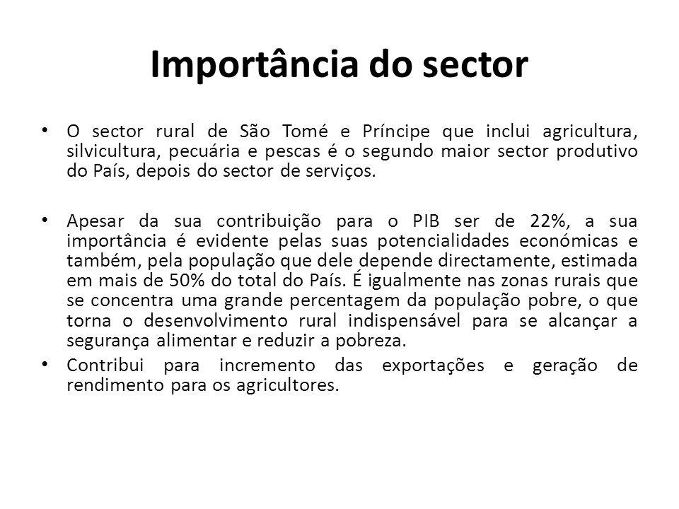 Importância do sector