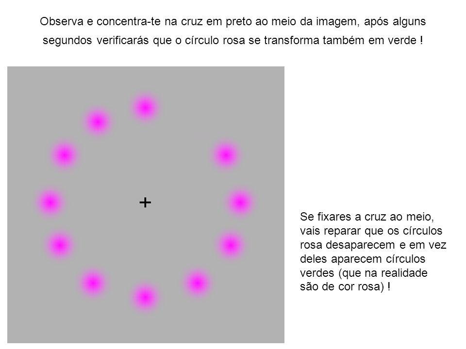 Observa e concentra-te na cruz em preto ao meio da imagem, após alguns segundos verificarás que o círculo rosa se transforma também em verde !