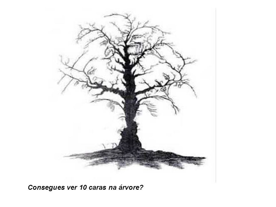 Consegues ver 10 caras na árvore