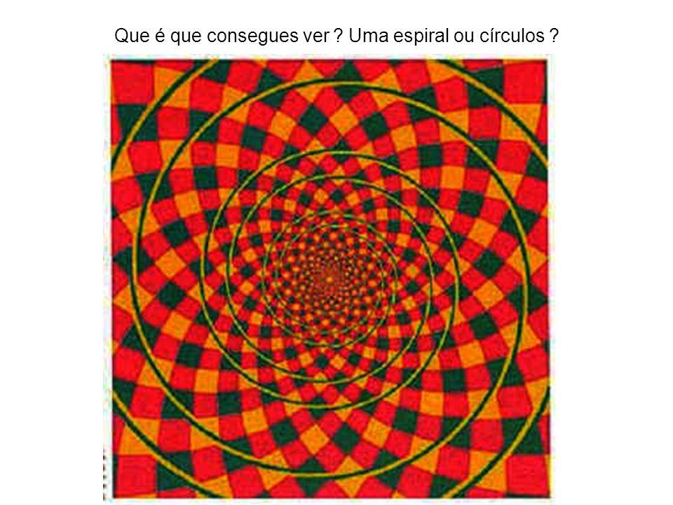 Que é que consegues ver Uma espiral ou círculos