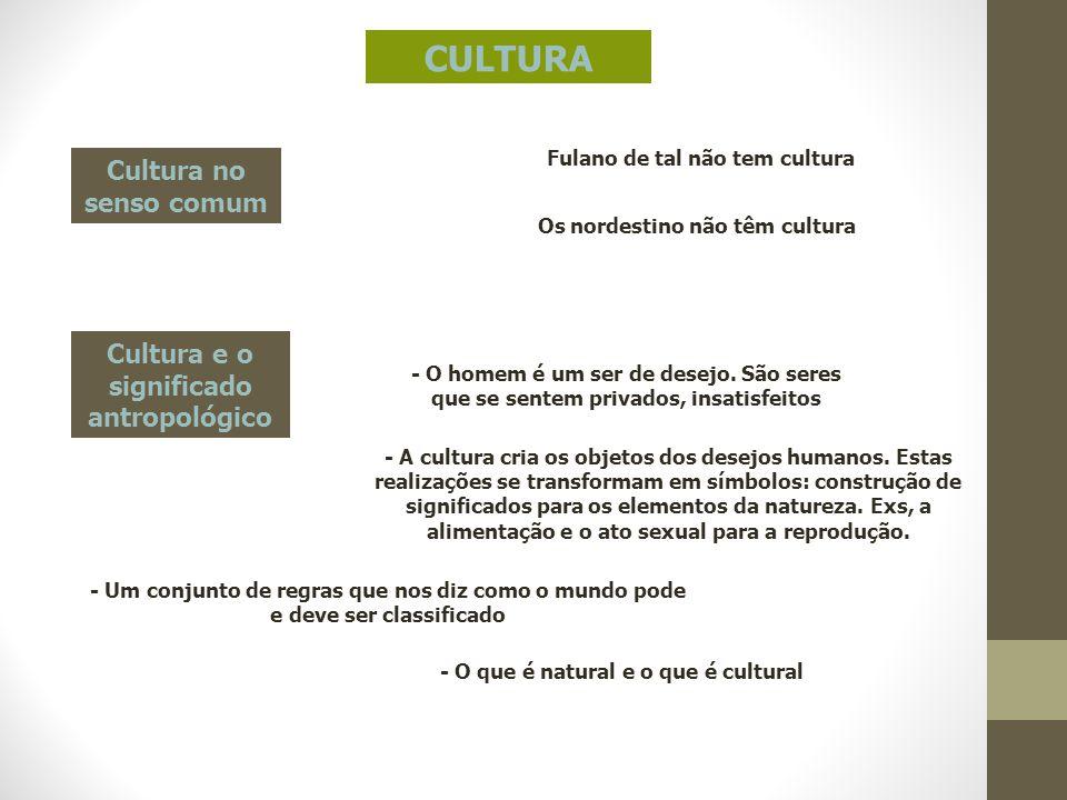 CULTURA Cultura no senso comum Cultura e o significado antropológico
