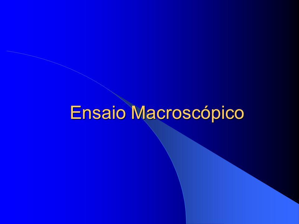 Ensaio Macroscópico