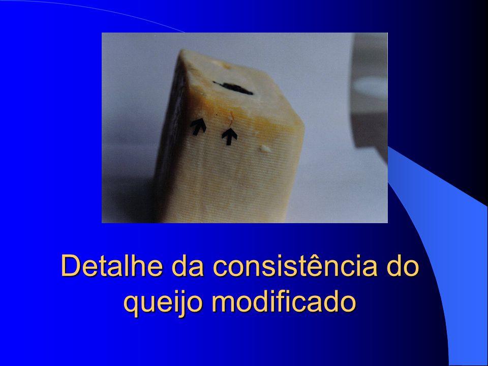 Detalhe da consistência do queijo modificado