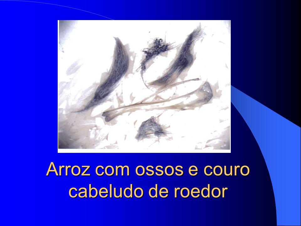 Arroz com ossos e couro cabeludo de roedor