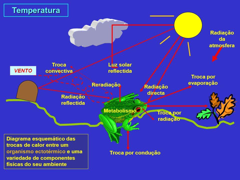 Temperatura Radiação da atmosfera Troca convectiva