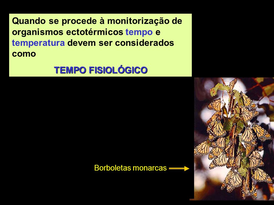 Quando se procede à monitorização de organismos ectotérmicos tempo e temperatura devem ser considerados como
