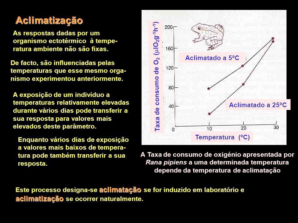 Aclimatização Taxa de consumo de O2 (lO2g-1h-1)