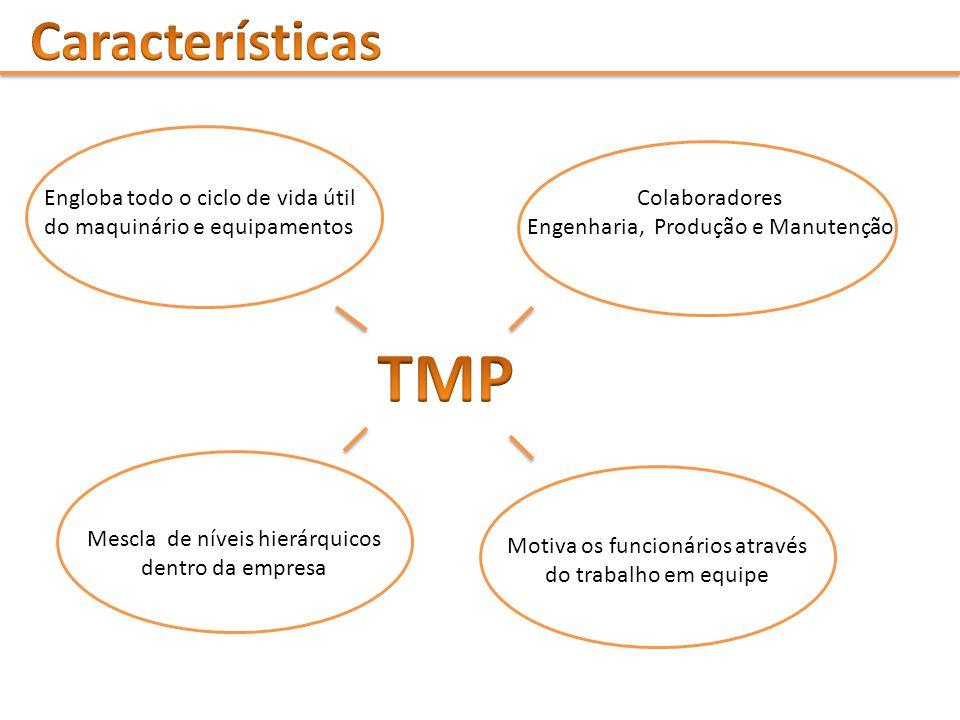 Características Engloba todo o ciclo de vida útil do maquinário e equipamentos. Colaboradores. Engenharia, Produção e Manutenção.