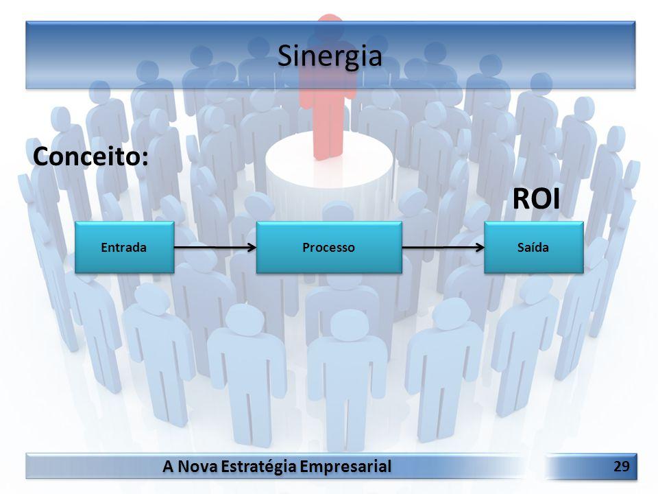 Sinergia Conceito: ROI Entrada Processo Saída