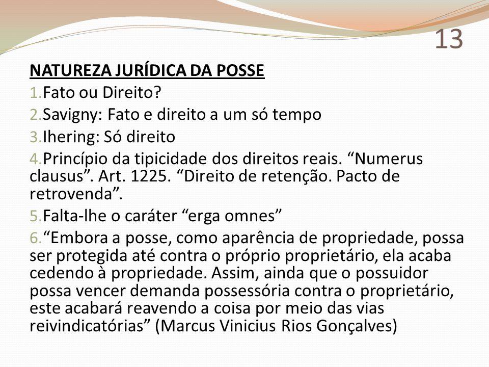 13 NATUREZA JURÍDICA DA POSSE Fato ou Direito