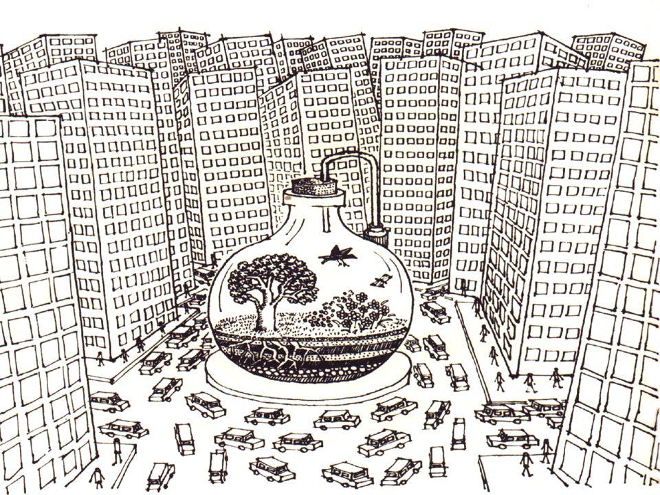 Nas cidades, devido ao elevado preço do solo, os espaços verdes são raros.
