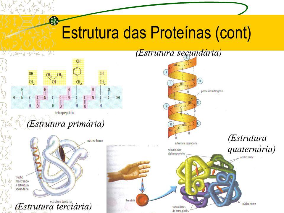 Estrutura das Proteínas (cont)