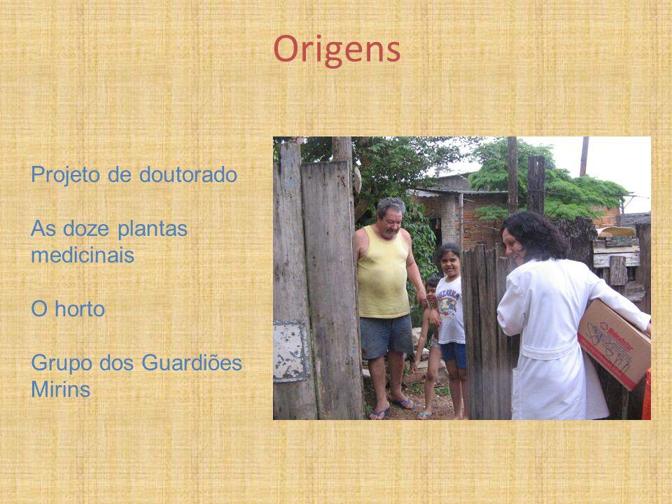 Origens Projeto de doutorado As doze plantas medicinais O horto