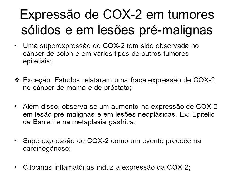 Expressão de COX-2 em tumores sólidos e em lesões pré-malignas