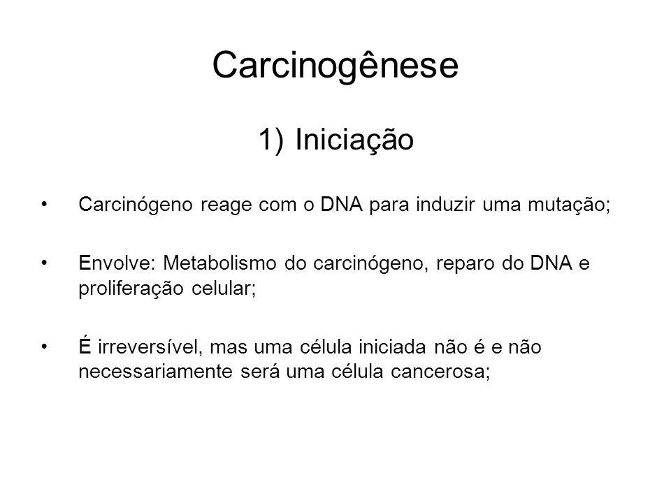 Carcinogênese Iniciação