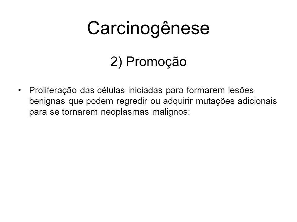 Carcinogênese 2) Promoção