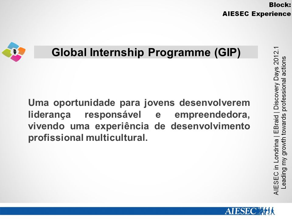 Global Internship Programme (GIP)