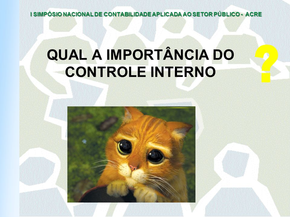 QUAL A IMPORTÂNCIA DO CONTROLE INTERNO
