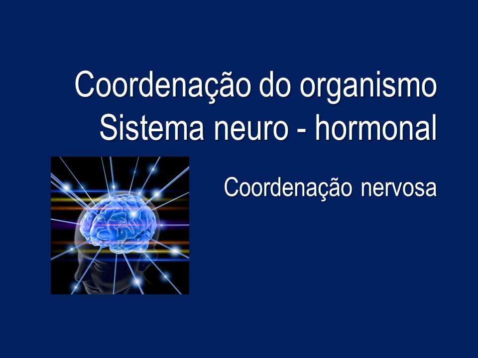 Coordenação do organismo Sistema neuro - hormonal