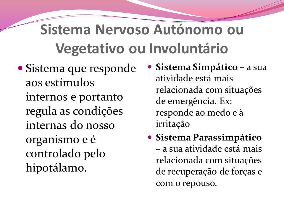 Sistema Nervoso Autónomo ou Vegetativo ou Involuntário