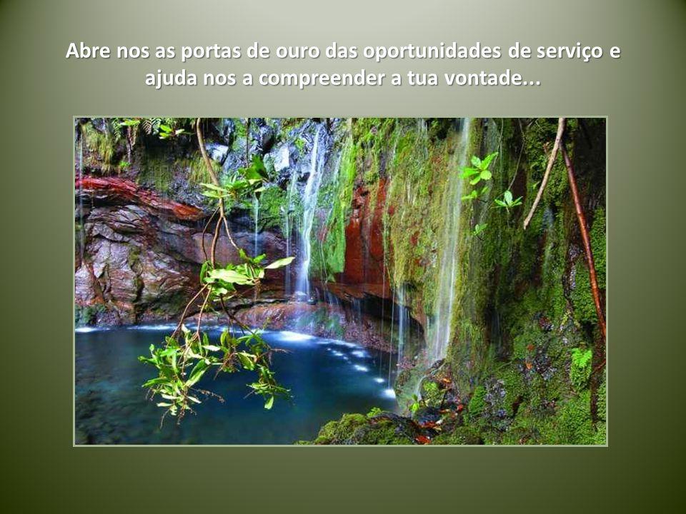 Abre nos as portas de ouro das oportunidades de serviço e ajuda nos a compreender a tua vontade...