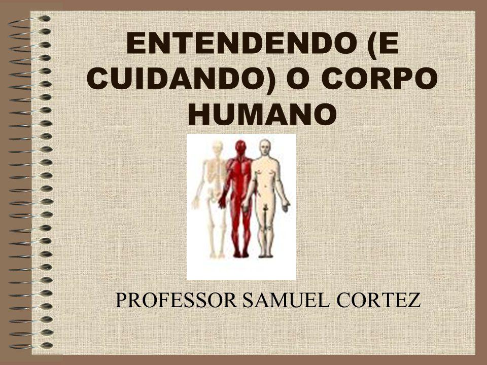 ENTENDENDO (E CUIDANDO) O CORPO HUMANO