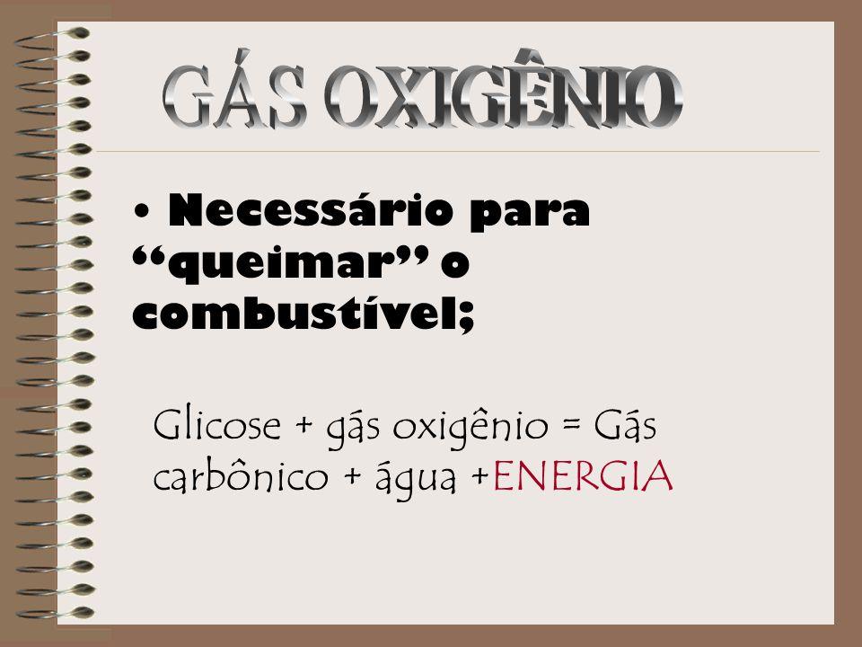 GÁS OXIGÊNIO Necessário para queimar o combustível; Glicose + gás oxigênio = Gás carbônico + água +ENERGIA.