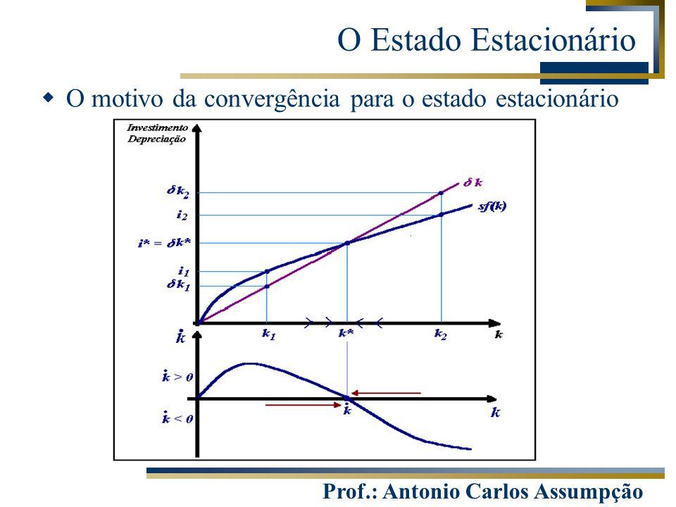 O Estado Estacionário O motivo da convergência para o estado estacionário