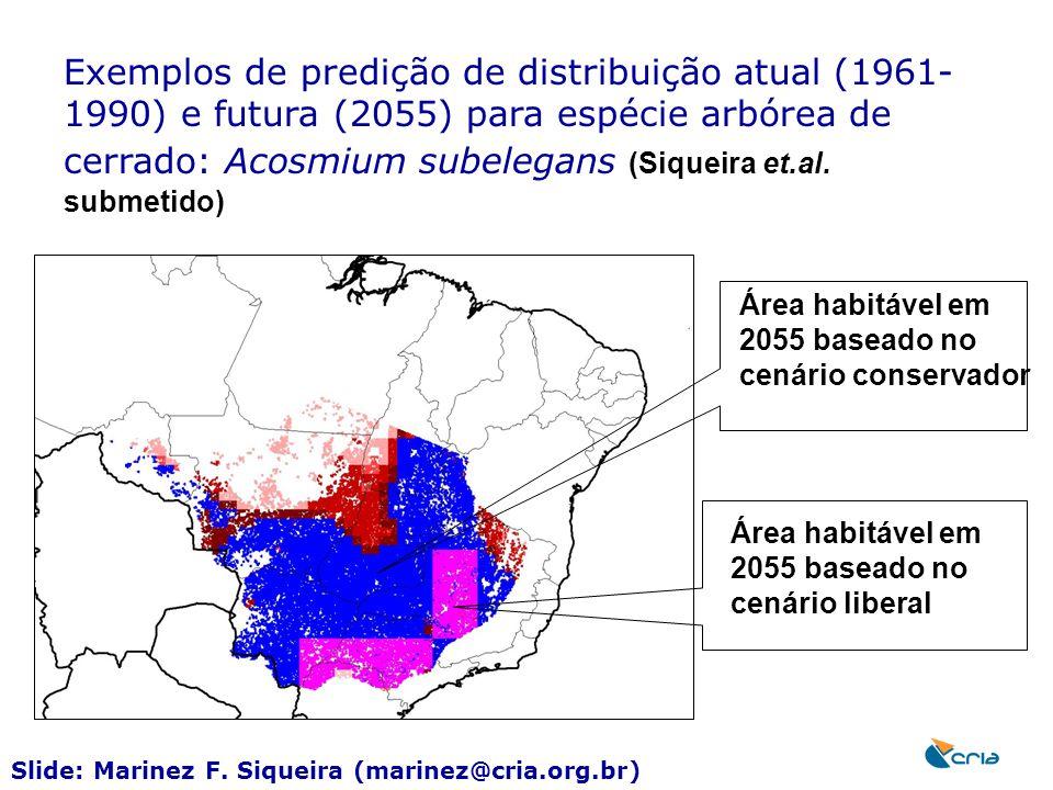Exemplos de predição de distribuição atual (1961-1990) e futura (2055) para espécie arbórea de cerrado: Acosmium subelegans (Siqueira et.al. submetido)