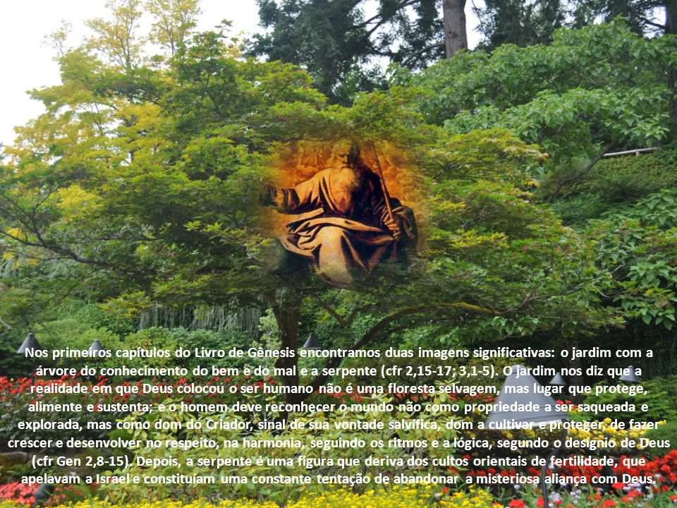 Nos primeiros capítulos do Livro de Gênesis encontramos duas imagens significativas: o jardim com a árvore do conhecimento do bem e do mal e a serpente (cfr 2,15-17; 3,1-5).