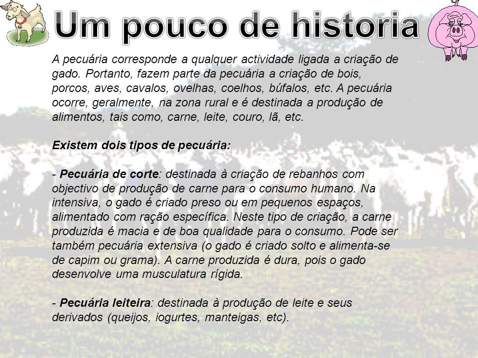 Um pouco de historia