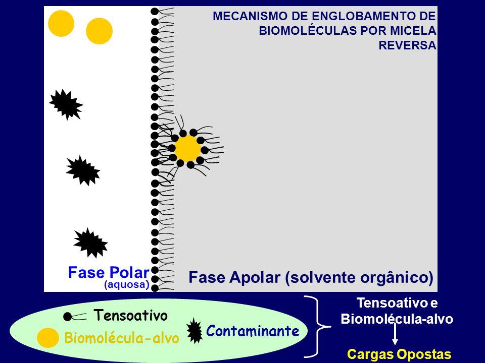 Adalberto Pessoa Junior - Extração Líquido-Líquido de Biomoléculas