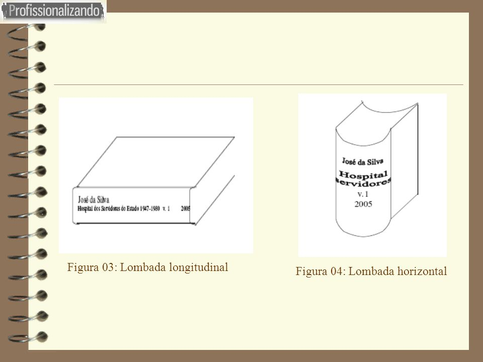 Figura 03: Lombada longitudinal