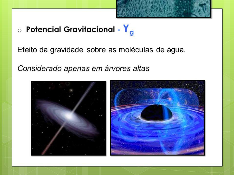 Potencial Gravitacional - Yg