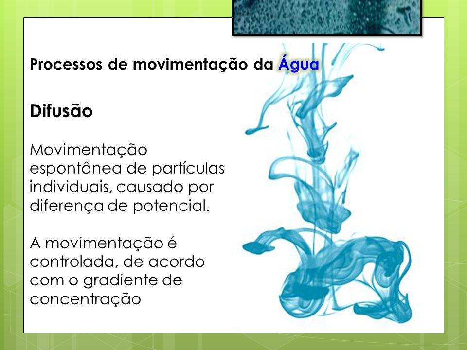 Difusão Processos de movimentação da Água