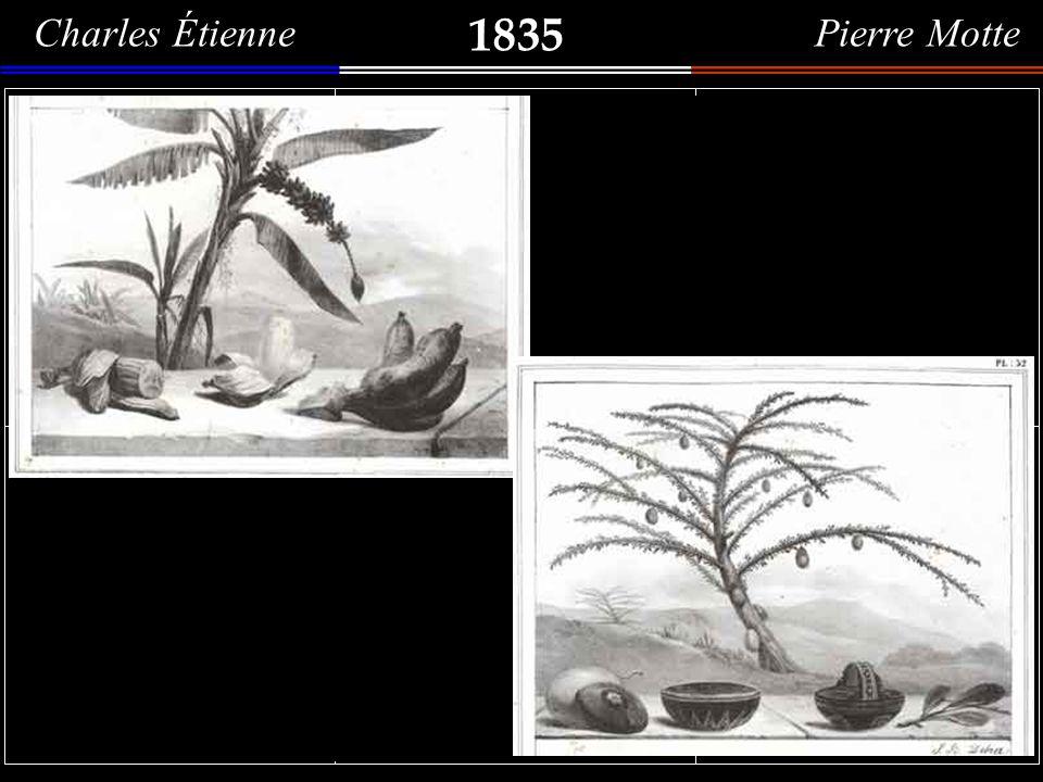 1835 Charles Étienne Pierre Motte