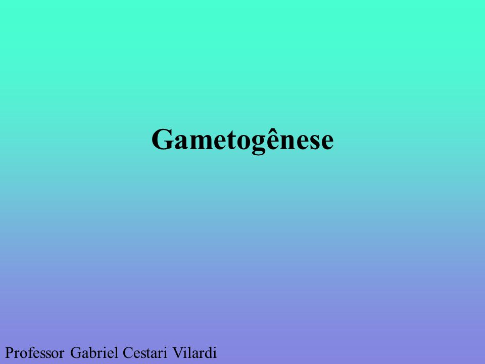 Gametogênese Professor Gabriel Cestari Vilardi