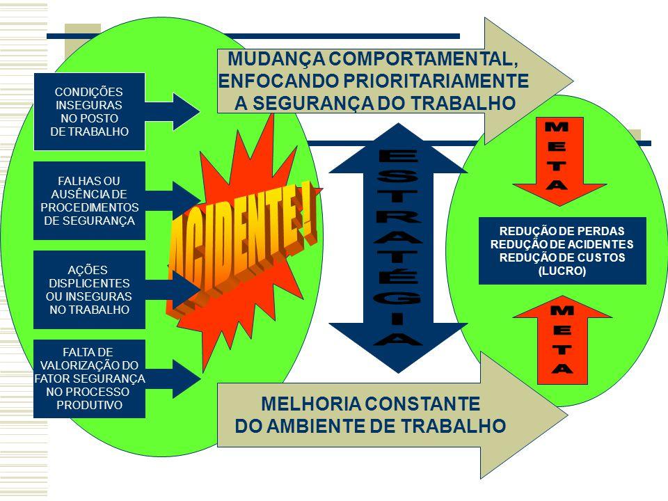 META ACIDENTE ! ESTRATÉGIA META MUDANÇA COMPORTAMENTAL,