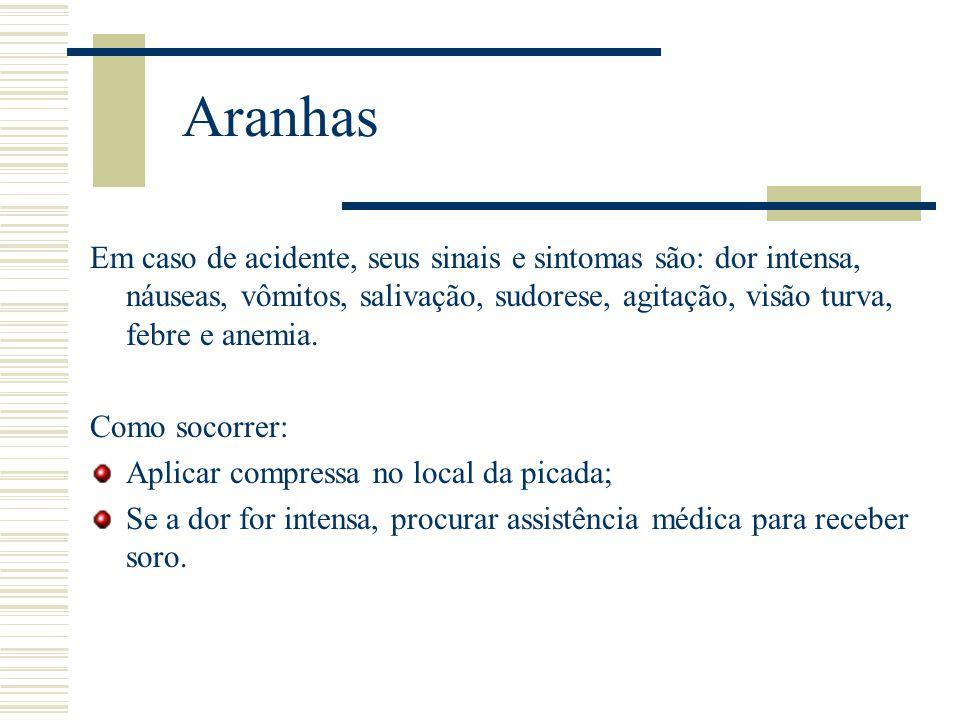 Aranhas Em caso de acidente, seus sinais e sintomas são: dor intensa, náuseas, vômitos, salivação, sudorese, agitação, visão turva, febre e anemia.