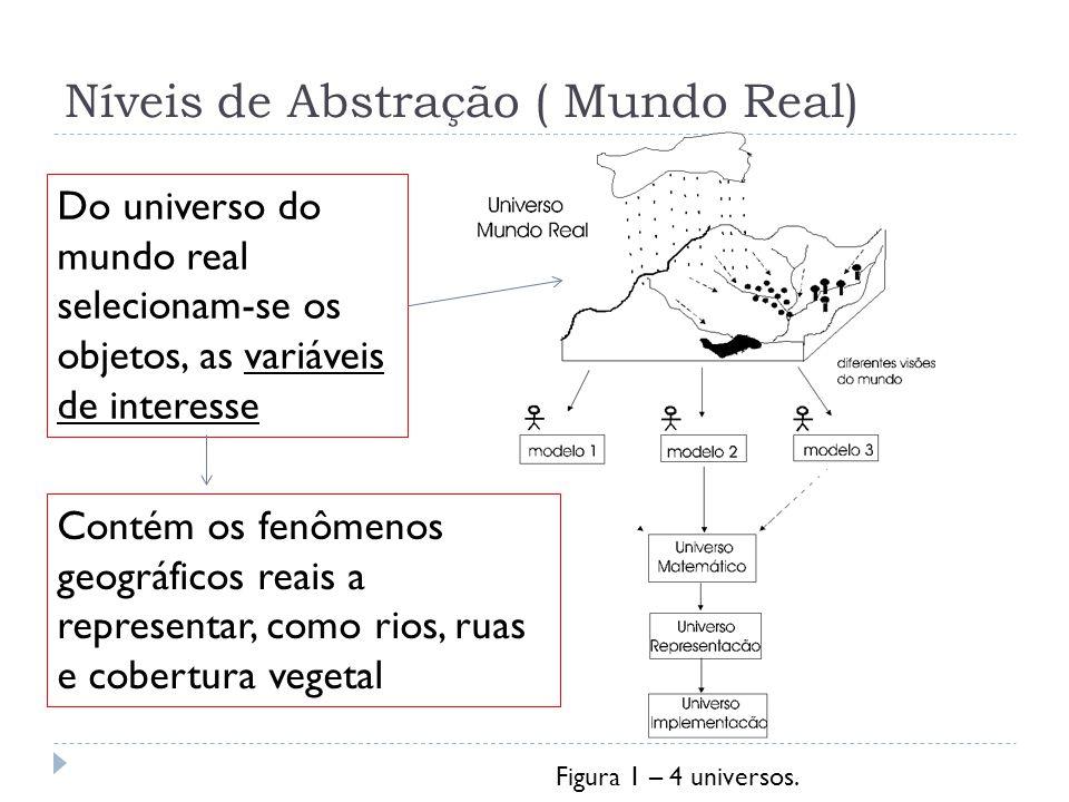 Níveis de Abstração ( Mundo Real)