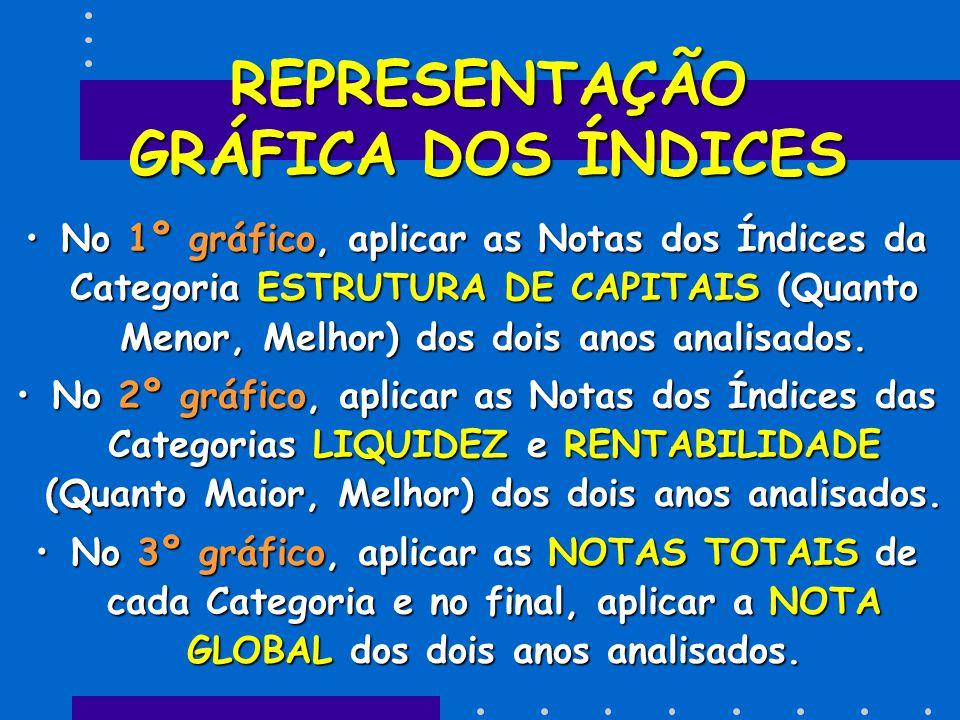 REPRESENTAÇÃO GRÁFICA DOS ÍNDICES