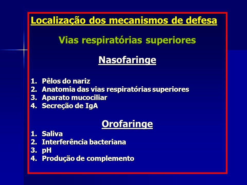 Vias respiratórias superiores
