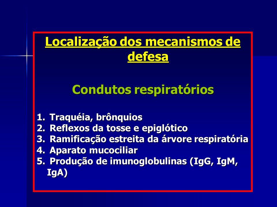 Localização dos mecanismos de defesa Condutos respiratórios