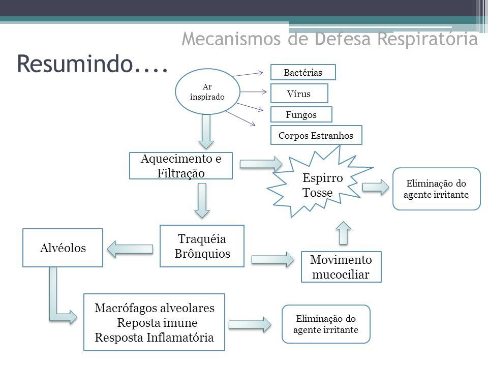 Resumindo.... Mecanismos de Defesa Respiratória