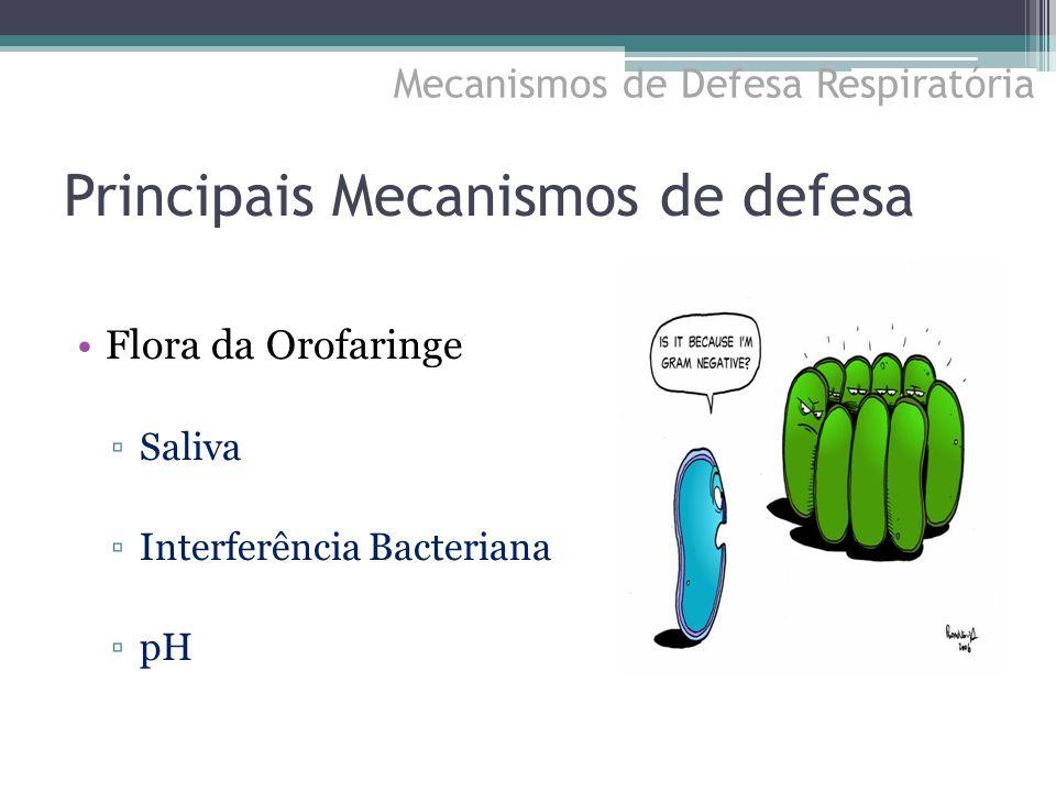 Principais Mecanismos de defesa