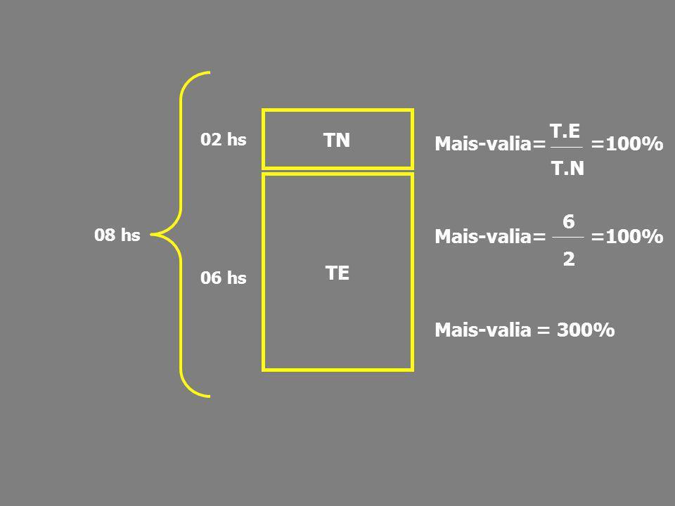 TN T.E T.N 6 TE 2 Mais-valia= =100% Mais-valia= =100%