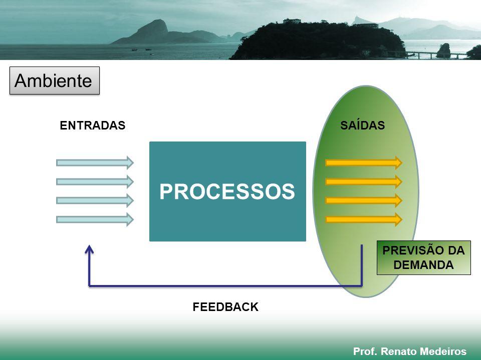 PROCESSOS Ambiente ENTRADAS SAÍDAS PREVISÃO DA DEMANDA FEEDBACK